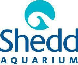 Shedd Aquarium Promo Codes: Up to 99% off