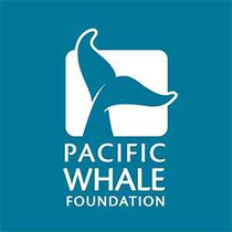 Pacific Whale Foundation Promo Codes: Up to 20% off