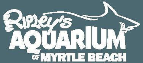 Ripley's Aquarium Promo Codes: Up to 50% off