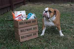 Bullymake.com Promo Codes: Up to 100% off